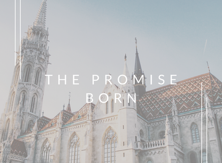 The Promise Born | A Series in Luke