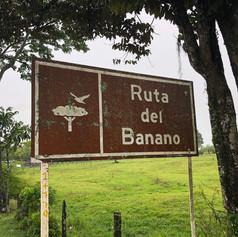 ruta_del_banano.jpg