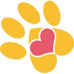 Joyful Paws Pet Spa