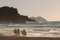 Sayulita Horseback Riding