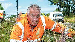 This week Laurence Reed considers the dangers for motorists posed by overgrown hedges PICTURES: PAUL WILLIAMS