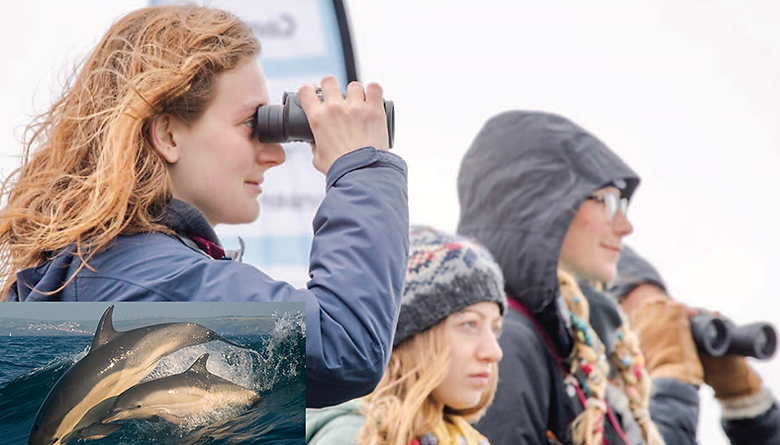 Scan the seas for marine mammals, look for rockpool monsters and delights or even go on a snorkel safari to mark this year's National Marine Week, urge Cornwall Wildlife Trust PICTURES: ADRIAN LANGDON / HEDVIKA MICHNOVA