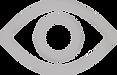 eye-icon-trans copy.png