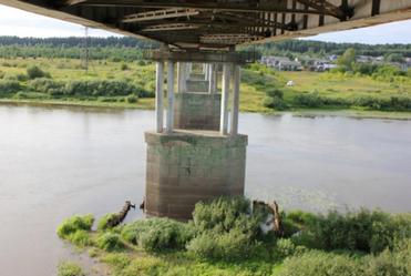 Существующий мост на р. Пижма  2.png