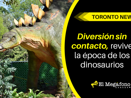 Diversión sin contacto, revive la época de los dinosaurios