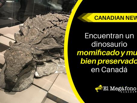 Encuentran un dinosaurio momificado y muy bien preservado en Canadá