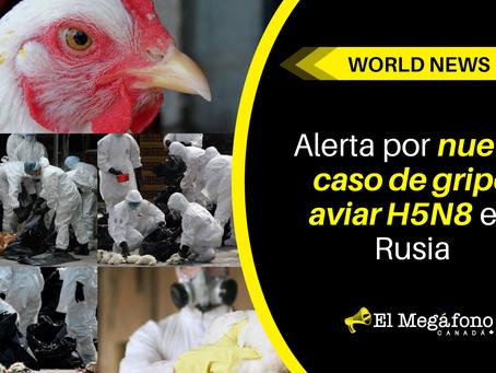Alerta por nuevo caso de gripe aviar H5N8