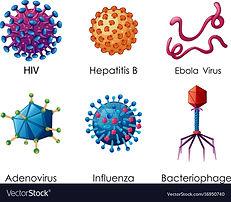 six-types-of-viruses-on-white-background