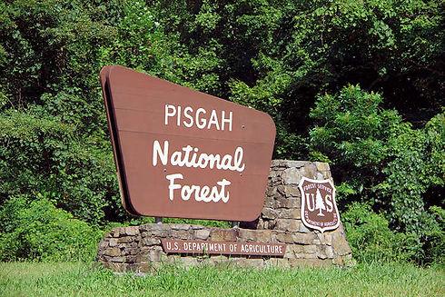 pisgah-national-forest-sign.jpg