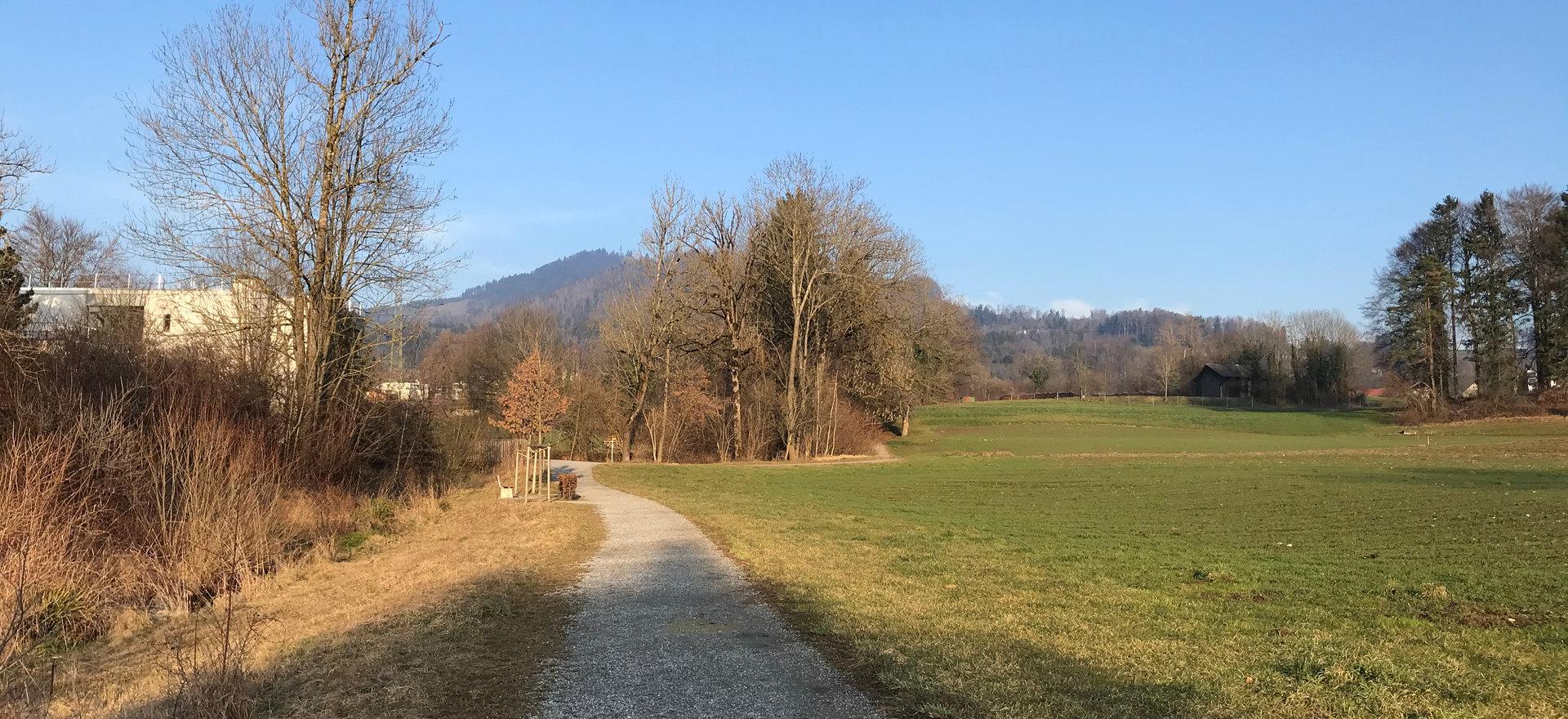 Spaziergänge im Grünen