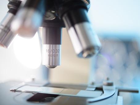 Объем проводимых в РФ патолого-анатомических исследований