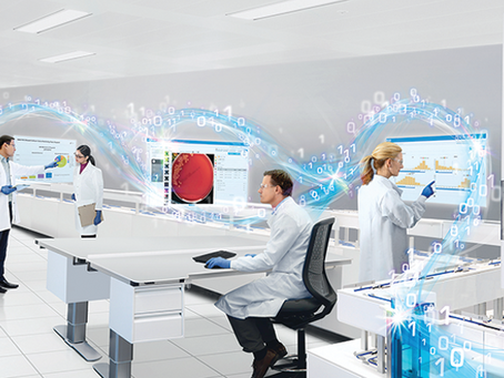 Проект: исследование рынка автоматизированных станций микробиологического посева