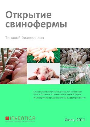 Бизнес план свинофермы (с финансовой моделью)