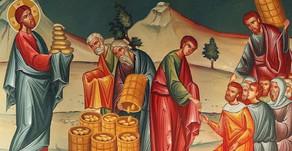 8th Sunday of Matthew