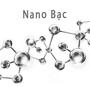 nano-bac 1.jpg