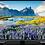 """Thumbnail: Hitachi 43"""". Full HD . Android Smart TV"""