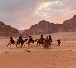 Camel excursion