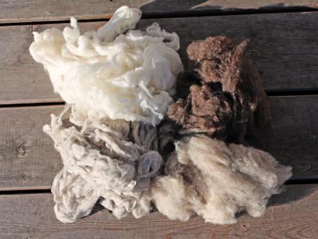 Warum mongolische Wolle?