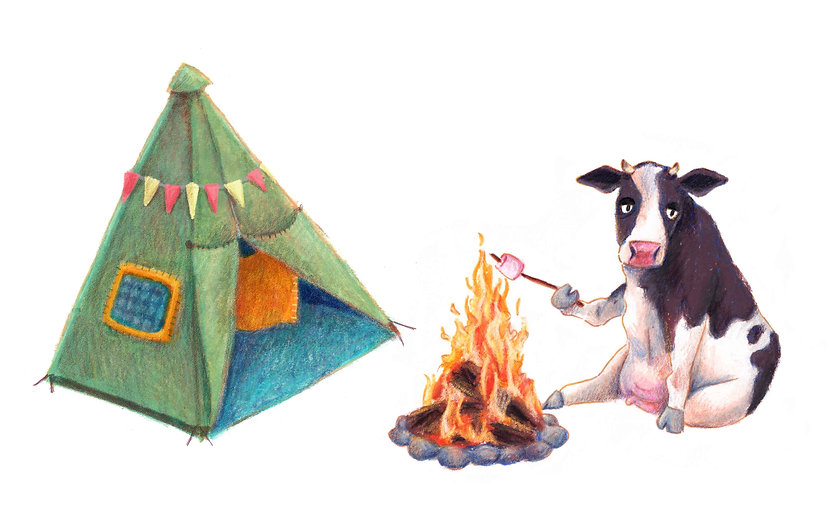 cow-and-tent.jpg