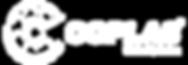 COPLAS Linha Química - Desmoldante, Cura Química, Adesivo