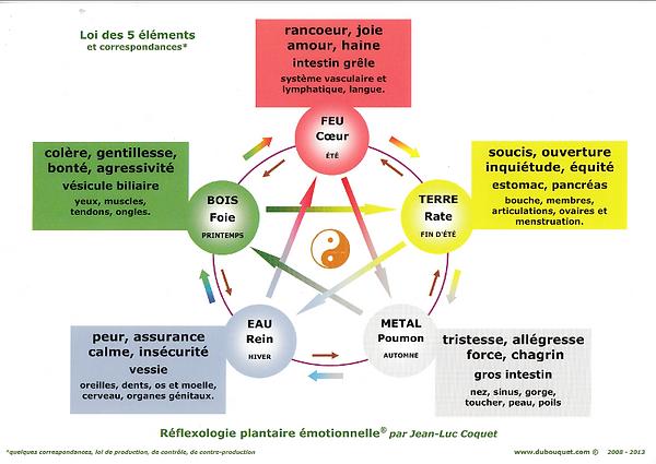 Réflexologie plantaire Emotionnelle, les 5 éléments Blain