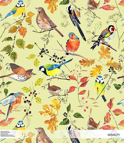 NHF119 Autumn Birds