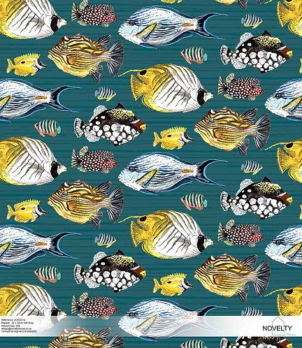 ZOEE014 Angel Fish