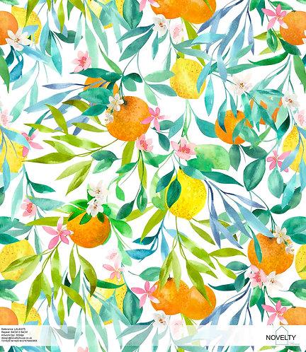 LAUE075 Citrus Tree