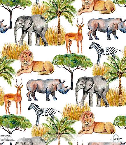 DIAB046 On safari