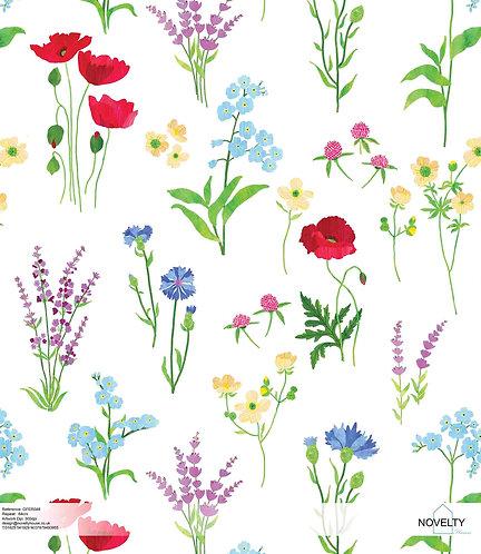 GFER048 Flower studies