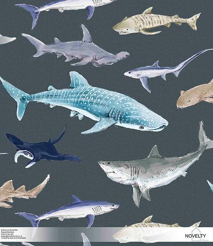 RUDU002  Lovely Sharks