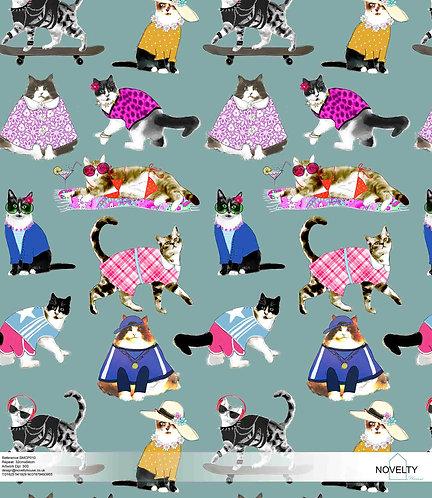 SMCP010 So catty