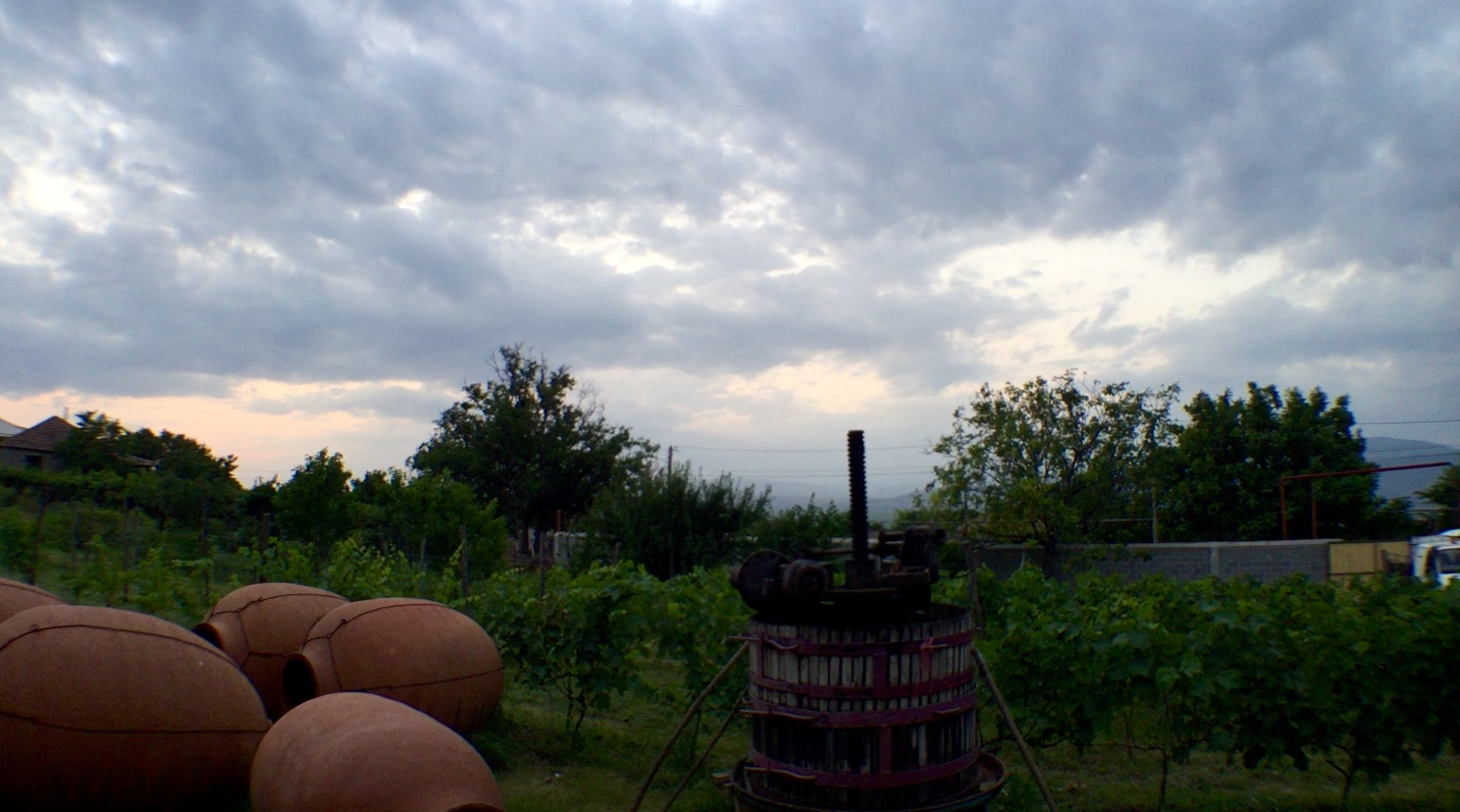 Iago's winery at Dusk