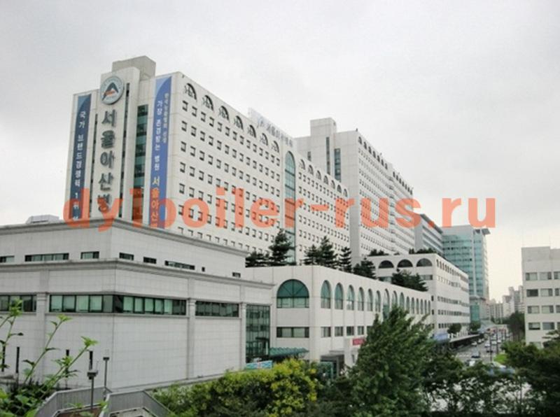 Госпиталь Хёндэ