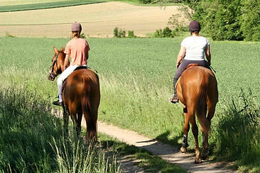 rutas a caballo cerca de Zorita de los Canes