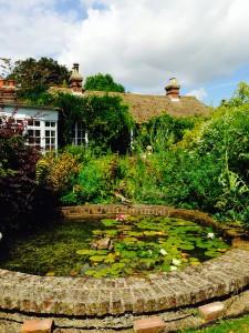 Pond at Denmans Garden
