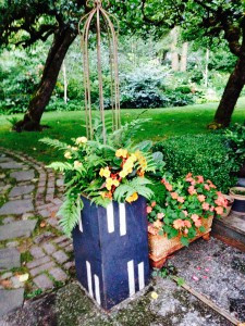 Begonias and impatiens planted with ferns for shade