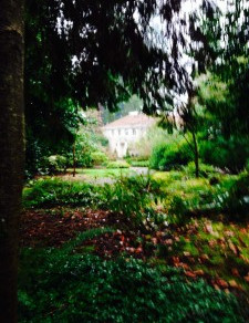 Lakewold Garden