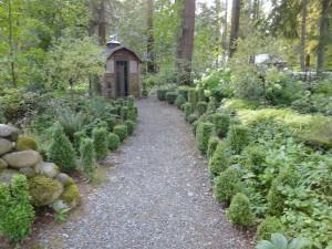 Linda's garden - after