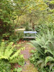 Hidden old blue bench