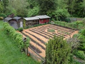 compost in the vegetable garden