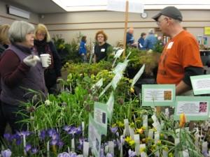 selling plants