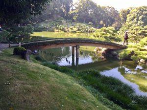 Kiyosumi Garden - Tokyo