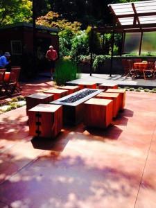 Denise Lane's garden