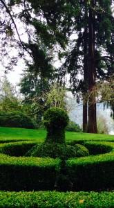 Bird topiary at Lakewold Garden