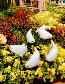 Northwest Flower and Garden Show Wrap-up