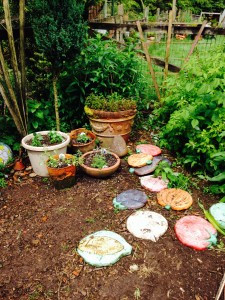 Stepping stones and herb pots