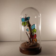 Cabinet de curiosités aux 3 papillons