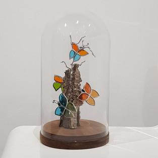 Cabinet de curiosités Forêt de papillons