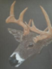 The Deer.jpg